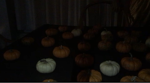 Funnelle Hall has it's largest Funnelle-o-ween Party so far